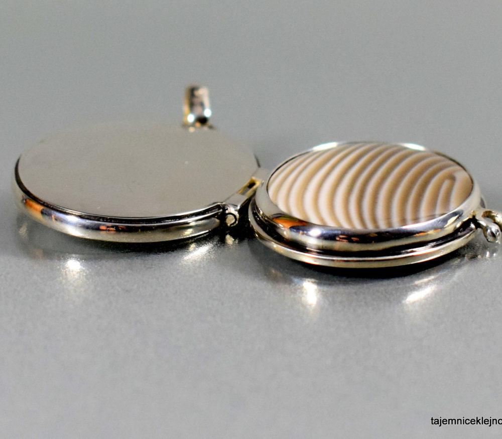 sekretnik srebrny z krzemieniem pasiastym