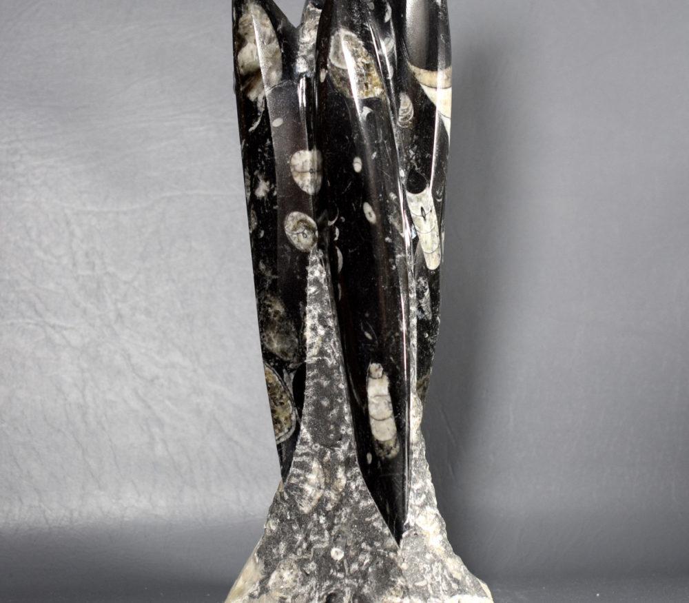 rzeźba ze skamieniałościami Orthoceras