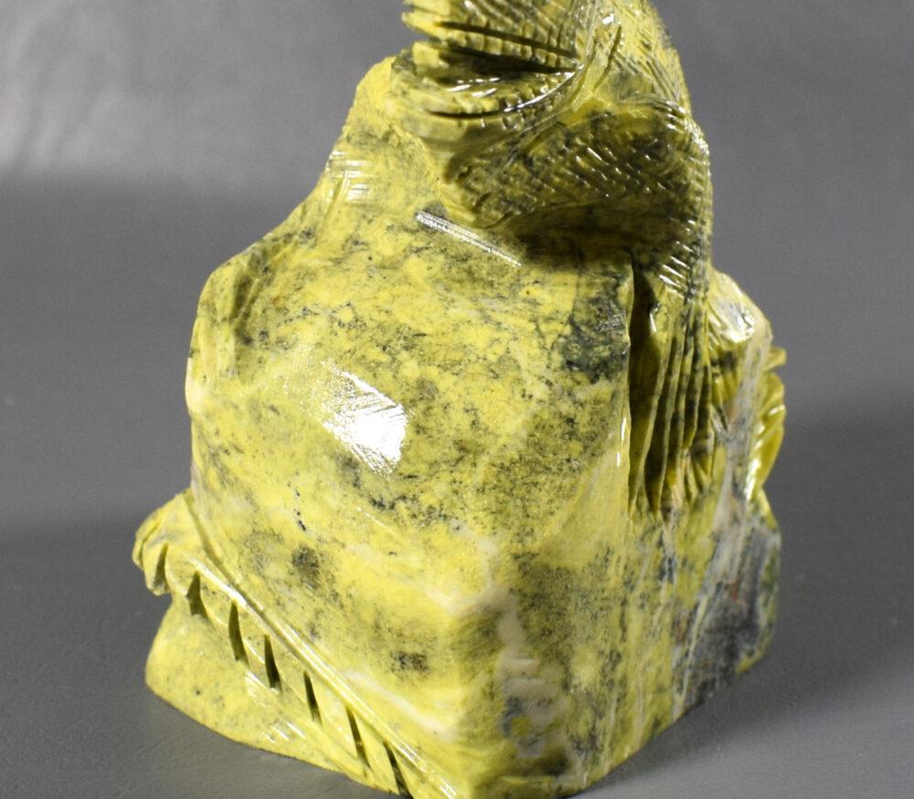 jaszczurka z serpentynitu, iguana